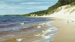 Βρόχος Tidewash Η παλίρροια θάλασσας πλένει επάνω μια αμμώδη ακτή και έξω πάλι Βρόχος-ικανός συνδετήρας 4K απόθεμα βίντεο
