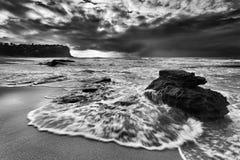 Βρύο λίθων άμμου Bungan θάλασσας Στοκ Φωτογραφία