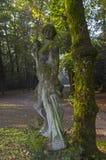 Βρύο-καλυμμένο άγαλμα πετρών στο παλαιό πάρκο Στοκ Φωτογραφίες