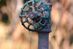 Βρύση με την πτώση και τη σφήκα νερού Στοκ φωτογραφία με δικαίωμα ελεύθερης χρήσης