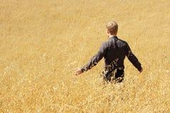 βρώμες πεδίων αγροτών που & Στοκ Εικόνες