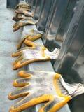 βρώμικα γάντια Στοκ εικόνες με δικαίωμα ελεύθερης χρήσης