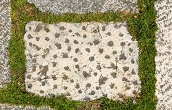 Βρώμικα εξωτερικά παλαιά μεσαιωνικά κεραμίδια κάστρων πεζουλιών γρανίτη στοκ εικόνες