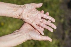 βρώμικα χέρια Στοκ Εικόνες