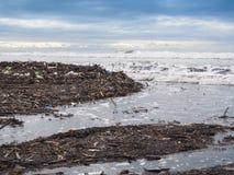 Βρώμικη παραλία Στοκ εικόνα με δικαίωμα ελεύθερης χρήσης