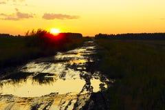 Βρώμικος αγροτικός δρόμος μεταξύ των τομέων στο ηλιοβασίλεμα Στοκ φωτογραφίες με δικαίωμα ελεύθερης χρήσης