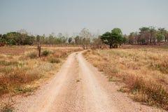 Βρώμικος δρόμος κάτω μεταξύ της ζούγκλας στοκ φωτογραφίες