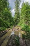Βρώμικος δρόμος με τις μεγάλες λακκούβες στο δάσος Στοκ Φωτογραφία
