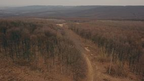 Βρώμικος δρόμος στο δάσος απόθεμα βίντεο