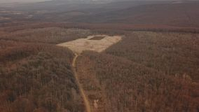 Βρώμικος δρόμος στο δάσος φιλμ μικρού μήκους