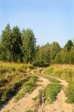 Βρώμικος δρόμος στο δάσος Στοκ φωτογραφία με δικαίωμα ελεύθερης χρήσης