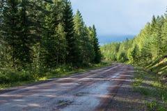 Βρώμικος δρόμος στο σουηδικό δάσος Στοκ εικόνες με δικαίωμα ελεύθερης χρήσης