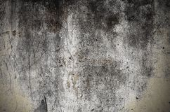 Βρώμικος λεκιασμένος συμπαγής τοίχος με τις ρωγμές και τη φόρμα στοκ φωτογραφίες