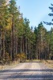 Βρώμικος δρόμος επαρχίας και ξύλινος φράκτης Στοκ φωτογραφία με δικαίωμα ελεύθερης χρήσης