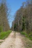 Βρώμικος δρόμος μέσω του δάσους και του τομέα Στοκ φωτογραφία με δικαίωμα ελεύθερης χρήσης