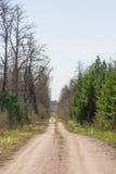 Βρώμικος δρόμος μέσω του δάσους και του τομέα στοκ εικόνα με δικαίωμα ελεύθερης χρήσης