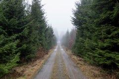 Βρώμικος δρόμος που εξαφανίζεται στην υδρονέφωση Στοκ Φωτογραφία