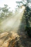 Βρώμικος δρόμος που καλύπτεται με μια ομίχλη Στοκ φωτογραφία με δικαίωμα ελεύθερης χρήσης