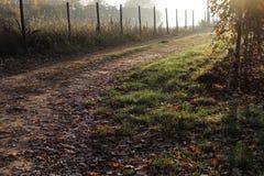 Βρώμικος δρόμος στην επαρχία στοκ φωτογραφία