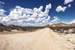 Βρώμικος δρόμος στο δέντρο του Joshua Στοκ εικόνα με δικαίωμα ελεύθερης χρήσης