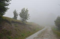 Βρώμικος δρόμος της Misty: Μυστικό υπόβαθρο φύσης Στοκ εικόνες με δικαίωμα ελεύθερης χρήσης