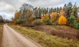 Βρώμικος δρόμος χώρας κατά τη διάρκεια του φθινοπώρου στοκ φωτογραφία με δικαίωμα ελεύθερης χρήσης