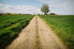 Βρώμικος δρόμος Στοκ εικόνες με δικαίωμα ελεύθερης χρήσης