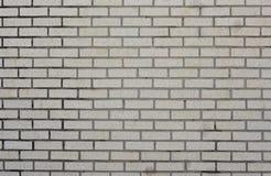 βρώμικος τοίχος συστάσε Στοκ Φωτογραφίες