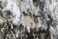 βρώμικος τοίχος σύσταση&sigma Στοκ Φωτογραφίες