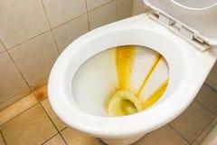 Βρώμικο κύπελλο τουαλετών με τις καταθέσεις λεκέδων limescale Στοκ Εικόνα