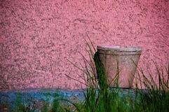 Βρώμικο ροζ Στοκ φωτογραφίες με δικαίωμα ελεύθερης χρήσης