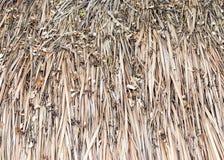 Βρώμικο thatch στοκ φωτογραφίες με δικαίωμα ελεύθερης χρήσης