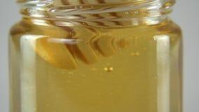 Βυθίστε το ξύλινο κουτάλι στο μέλι απόθεμα βίντεο