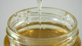 Βυθίστε το ξύλινο κουτάλι στο μέλι φιλμ μικρού μήκους
