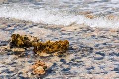 Βυθός μέσω του κρυστάλλου - καθαρίστε το νερό Θαλάσσιο υπόβαθρο θαμπάδων, δύσκολος βυθός μέσω του σαφούς νερού σε Bayahibe, Λα Al στοκ φωτογραφία με δικαίωμα ελεύθερης χρήσης