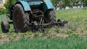Βωλοκόποι μπλε τρακτέρ ο γεωργικός τομέας στα τέλη του καλοκαιριού απόθεμα βίντεο