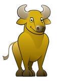 βόδι ταύρων κίτρινο Στοκ εικόνες με δικαίωμα ελεύθερης χρήσης