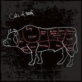 Βόειο κρέας που κόβεται ή περικοπές του βόειου κρέατος διανυσματική απεικόνιση