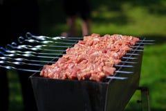 βόειο κρέας shishkabobs Στοκ φωτογραφία με δικαίωμα ελεύθερης χρήσης