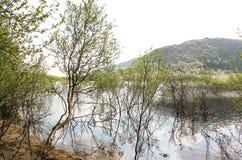 Βόρεια λίμνη Στοκ φωτογραφία με δικαίωμα ελεύθερης χρήσης