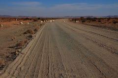 Βόρεια επαρχία ακρωτηρίων Namaqualand τοπίων της Νότιας Αφρικής Στοκ Φωτογραφίες