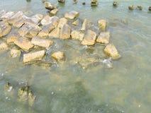 Βόρεια θάλασσα - δείτε από την ιστορική πόλη του ένταμ, προέλευση του διάσημου τυριού Edamer στοκ φωτογραφία με δικαίωμα ελεύθερης χρήσης