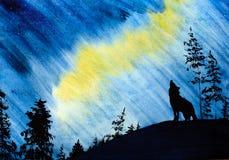 Βόρεια φω'τα και ο λύκος διανυσματική απεικόνιση