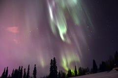 Βόρεια φω'τα πέρα από την Αλάσκα Στοκ εικόνα με δικαίωμα ελεύθερης χρήσης