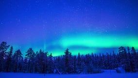 Βόρεια φω'τα πέρα από το σφάλμα χειμερινού δασικό χρόνου φιλμ μικρού μήκους