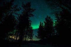Βόρεια φω'τα στο δάσος της Σουηδίας Στοκ φωτογραφία με δικαίωμα ελεύθερης χρήσης