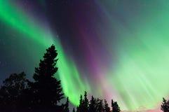 Βόρεια φω'τα Στοκ Φωτογραφίες