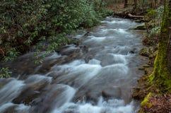 Βόρειος ποταμός της Γεωργίας, απόμερος Δεκέμβριος στοκ φωτογραφίες