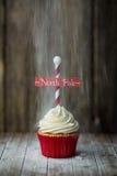 Βόρειος πόλος cupcake Στοκ φωτογραφίες με δικαίωμα ελεύθερης χρήσης