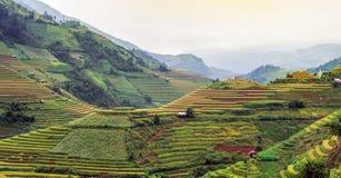Βόρειο Βιετνάμ στοκ εικόνα
